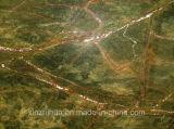 Marmo indiano naturale di verde della foresta pluviale per le scale /Wall/mattonelle di pavimento