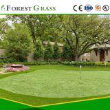 Gazon artificiel de faux d'aspect naturel de l'herbe, meilleur vendeur de service