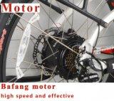 عمليّة بيع جيّدة سمين إطار العجلة [إ] دراجة لأنّ سيادات ([تد10ز-5])