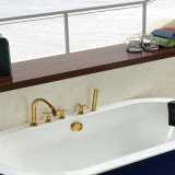 Vasca da bagno indipendente del migliore venditore (BG-7005H)