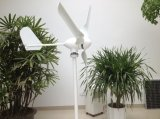 판매를 위한 AC 500W 12V 24V 바람 발전기