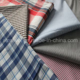 Yarn Dyed Knitting machine Nylon Spandex Shirts Fabric (SL2060 Strip and Check)