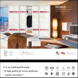 2015 de Garderobe van de Deur van Slding van het Gezicht Shinning (FY2398)