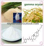 precio de fábrica Oryzanol, Gamma ORYZANOL 11042-64-1 para uso médico