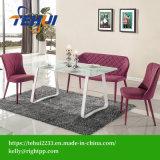 Pátio com jardim lazer moderno Home Office Mobiliário mesa de jantar do Hotel White