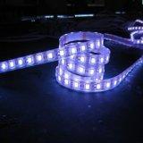 Banda a tubo flessibile della striscia SMD5050 LED di OEM/ODM Warm-White/RGB 72LEDs/M LED