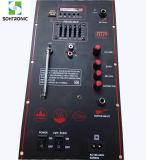 Circuito del perno dell'amplificatore di potere di alta qualità (Special 12V)