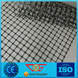 Bi-richting Geotechnisch Net van Plastic/PP Tweeassige Geogrid met Ce- Certificaat