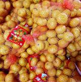 أصفر حلوة طفلة مندرين مع علبة تعليب