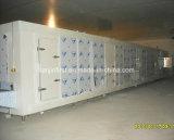 Equipamento de congelação rápida individual elevado do túnel IQF do marisco da eficiência