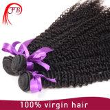 Fabrik-Verkaufs-hochwertiger lockiger brasilianischer menschlicher Jungfrau-Haar-Einschlagfaden