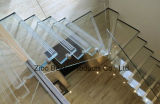 Fournisseurs de Building Glass for Office Floor Tower and Box