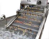 Machine de lavage aux légumes à la laitue à bulle à bulle d'air homologuée CE