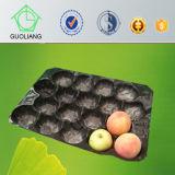 Freies Beispielkundenspezifische Entwurfs-Wegwerfplastikspeicher-Tellersegmente für frische Frucht-Verpackung