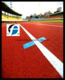 Спортивная площадка Используемая синтетическая беговая дорожка / ВПП / Тартан