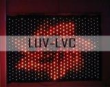Iluminação de palco LED/LED pano de cortina (LUV estrela-LVC)