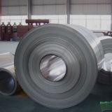 Bobina divisible del acero inoxidable de la calidad superior (316, 316L)