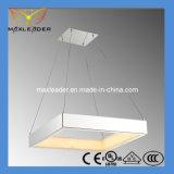 2014 neue LED moderne stilvolle LED-Beleuchtung (MD9842-1S) beleuchtend