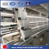 高品質の鋼鉄家禽は中国からの養鶏場装置のケージを収容する