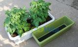 Janela de flores do jardim Self-Watering plástico Pot (HT5070)