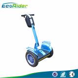 Elektrische Blokkenwagen van Scuter Electricos van Ecorider de Elektrische Esii L2