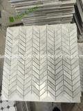 Mosaico, azulejos y mármoles de mármol blancos italianos de Carrara de diversos diseños
