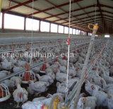 Equipamento de produção da grelha das aves domésticas