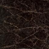 60x60cm des carreaux de sol en céramique émaillée (D6120)