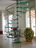 Espiral moderno de vidrio escaleras de vidrio de alta calidad y la Escalera de acero inoxidable