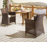 Oficina casera de mimbre del hotel de Málaga del patio al aire libre de la rota que cena los muebles del jardín (J637)