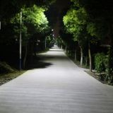 60W Luz Rua Solar com Marcação ce&RoHS& aprovado pela FCC
