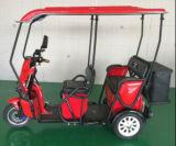 Bajo costo comprar triciclo eléctrico del pasajero para 3 persona