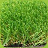 حديقة زخرفة يرتّب عشب اصطناعيّة لأنّ خارجيّ