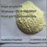 Tren Enanのボディービルのステロイドの粉Trenbolone Enanthate CAS: 472-61-5