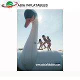 Trampolino trainabile del cigno della nuova acqua di disegno, trampolino animale di figura del ponticello dell'acqua
