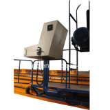 Тип машина Gantry Tbd2525 CNC Drilling для больших лучей h