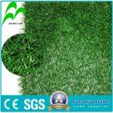 L'herbe de football Monofiament PE