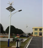Sistema claro híbrido solar do único vento do braço 20W-200W na luz de rua solar do diodo emissor de luz