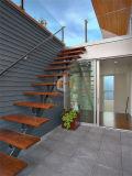 As escadas ao ar livre projetam a escadaria de madeira do passo da construção de aço