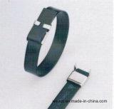 Fornitore di Ciao-Qualità di fascette ferma-cavo rivestite del PVC