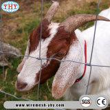 Frontière de sécurité de fil lourde de Bull de compensation de cheval de fil de hauteur