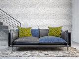 一義的な革およびファブリック羽のソファー