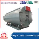 Chaudière à eau chaude de Wns d'approvisionnement d'usine de la Chine