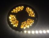 R/G/B sondern flexible LED Streifen-Lichter der Farben-300LEDs SMD2835 für Hotel-/Markt-/Raum-/Gebäude-Dekoration aus