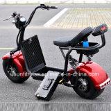 Fettes Rad-elektrischer Roller mit 01 - 60V 2000watt schwanzloser Motor