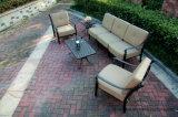 كلاسيكيّة ثرثرة أريكة محدّد [كست لومينوم] حديقة أثاث لازم