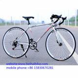 새 모델 700c 조정 기어 자전거