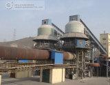 Производственная линия известки большой емкости конструкции Китая Ведущий Компании активно