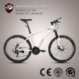 Aluminiumlegierung-Gebirgsfahrrad des Fahrrad-Turnier-24-Speed