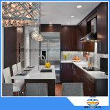 Perno di tiro dei montaggi della mobilia degli accessori della cucina dell'acciaio inossidabile delle maniglie del Governo